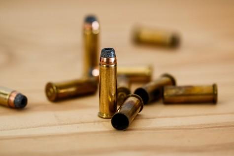 Guns and gun laws