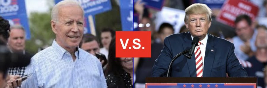 2020 election showdown: views of both candidates